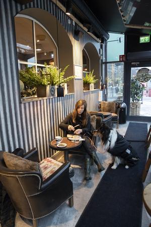 På Espresso house får hunden följa med in.