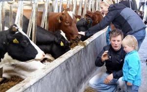 Per-Anders Persson visar sonen Elliot en nytagen bild på en ko. Bakom dem ses Maria Lasell, Mora med barnen Julia och Hanna.FOTO: HANS BLOOM