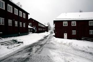 Ledande socialdemokraten Ingvar Henriksson vill att boende för ensamkommande och andra former av stödboende för ungdomar koncentreras till Brunnsvik. Men förslaget som det ser ut i dag får kritik eftersom det påstås öka social- och utbildnings kostnader med flera miljoner.
