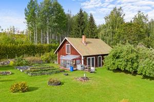 Stort uthus med odlingar. Foto: Carlsson Ring fastighetsmäklare