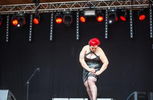 Anna Tunells hemliga plan var att  stoppa ned hårpinnarna i staupsen under presentationen av tävlingen