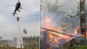 Helikoptrar användes i arbetet med naturvårdsbränningen. Bilden är ett montage. Foto: Erik Nyberg