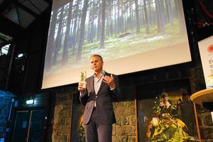 Per Lyrvall ser fördelar med att Stora Enso äger skog direkt jämfört med att bolaget äger skog genom det delägda bolaget Bergvik Skog.