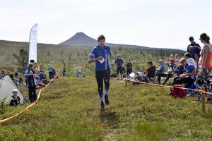 David Andersson, som arrangerar Idre Fjällmaraton, har lockat främst en rad orienteringsstjärnor till premiären av Idre Fjällmaraton.