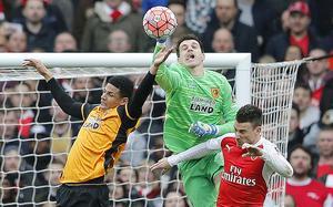 Jakupovic i FA-cupen mot Arsenal, februari 2016.
