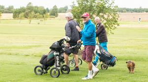 Stig Nordin och de övriga golfarna njuter av rundan. Ja, även hunden Donna trivs.