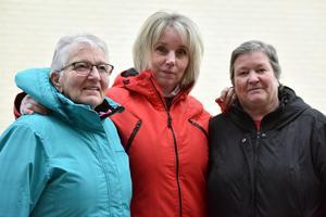 Anna Andersson, Susanne Ström och Gunilla Frisk är tre av dem som jobbat med boken om Fyriberg. De kommer samtliga från Bonäs.