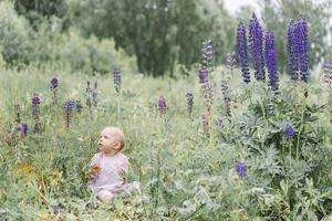 Lilla Juni på sommaräng. Foto: Jeanette  Laestander
