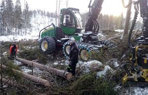 Under den treåriga utbildningen har eleverna 15 veckors praktik ute hos skogsföretag.