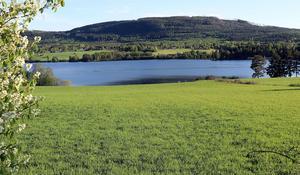 Ljungandalsvägen, Torpsjön.