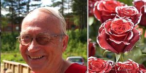 Stig Söderström, Falun.
