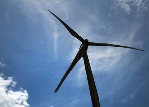 Gärna vindkraft, men det får inte ske på bekostnad av naturvärden, anser Moderaterna.