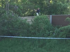 En kriminaltekniker fotar någonting i buskaget invid motorvägen.