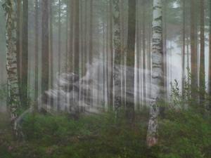 Var ute vid Norrbokurvan Årsunda i lördagsmorse för att försöka få till någon bild i dimman. Den låg ganska tätt bitvis. När man står där ute så känner man något som sveper förbi. Men man ser inget med blotta ögat. Men det var det här som kameran fångade. Foto: Stefan Hessman