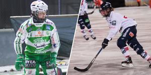 Virva Rylander och Ted Hedell är årets juniorer i svensk bandy.