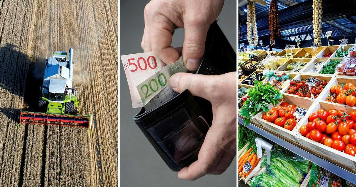 """Räkna med dyrare mat i höst: """"Allt annat vore sensationellt"""""""