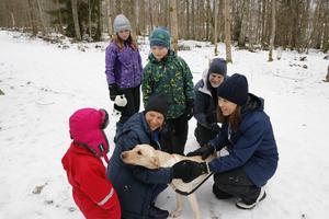Många nyfikna ville hälsa på hunden Fia.