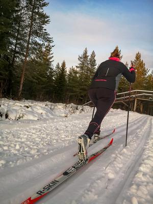Gunnar Högberg säger att det måste vara ett av de få platserna i landskapet där man kan åka längdskidor i spår nu, och tror att folk kommer att dyka upp till helgen. Foto: Jörgen Karlsson