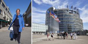 I stället för att inta en extrem position om EU:s budget borde Sverige förhandla på riktigt. Då kan Sverige kräva att flyttkarusellen till Strasbourg upphör, skriver Karin Karlsbro (L).