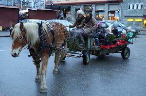 Hästskjutsen gick mellan Bergööhuset och torget i Hallsberg.