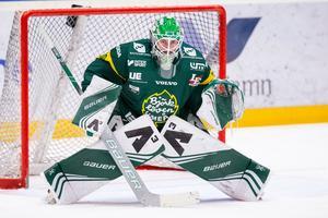 Det har blivit två matcher i Hockeyallsvenskan så här långt i höst för Mattias Pettersson. Foto: Johan Löf/Bildbyrån
