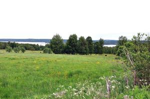 Vandringen under lördagen tar deltagarna med på en tur genom naturreservatet Fågelsången. Under lördagsturen  får deltagarna också information om de fem sågverken som fanns i Söråker.