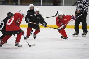 Foto: Arkiv. Hockeyträning i Järna ishall.