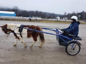 Ibland får Linnéa köra häst. Här sitter hon bakom ponnyn Rolle.