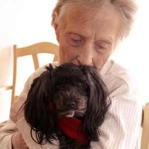 Vårdhunden Alison är en favorit – hon skulle följa med till Annas nya bostad, på Backsippan, under själva flytten.