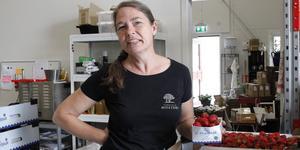 Katarina Holmberg med ett lass överblivna midsommarjordgubbar som hon precis har fått levererade från en lokal butik.