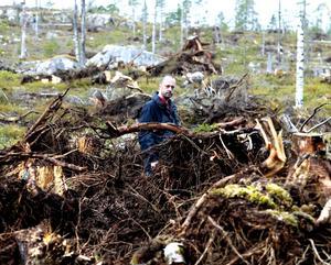 Skogsstyrelsens Niklas Åberg är förvånad över storleken på fångsterna utanför Torpshammar.