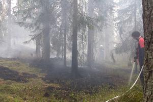 En skogsbrand utbröt öster om Surahammar under onsdagseftermiddagen.