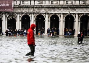 Venedig står under vatten i en av de värsta översvämningarna i stadens historia. Foto: Luca Bruno/AP/TT