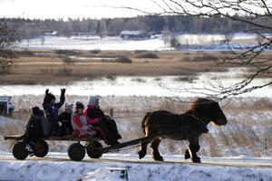 Vintermarknad i Tysslinge, med bara några veckor kvar till jul. Då passar det bra med häst och vagn - och bjällror på hästen.
