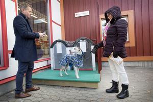 Jens Törnberg visar Åsa Palm, som ännu inte registrerat sig som användare, hur appen fungerar. Hon har tre hundar varav whippethanen Milo fick titta in i de båda burarna.