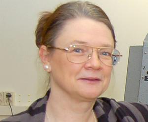 Gagnefs kultur- och fritidschef Liselotte Stöby Ingvarsson har konstaterat att både Strandbacken och Ängsholn har stora kulturhistoriska värden, har haft stor betydelse för nöjes- och kulturlivet och är något av tidsdokument.