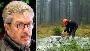 Riksdagskrönika Ingemar Nilsson: Det är dags att planera för återtåget