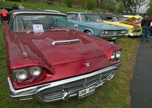 Många tjusiga bilar ställdes ut i stadsparken i Sollefteå under lördagen.