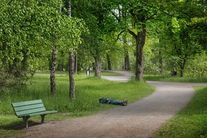 Hyreskomplex i stället för park i Boulognerskogen kan säkert intressera någon vaken exploatör, skriver skribenten.