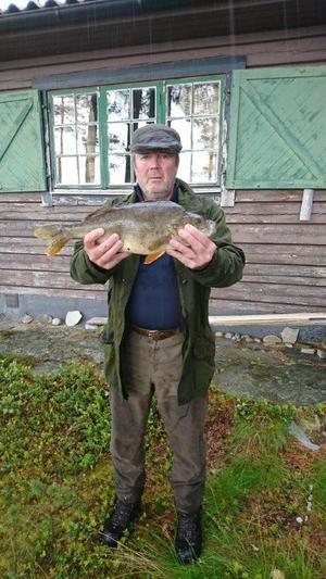 Håkan Selin tog denna abborre på nästan två kilo i Gangelsjön, Långå.