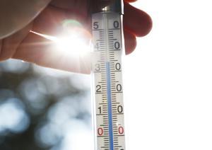Vad gör Ludvikahem åt värmen som skadar de äldre på Notgården? Foto: TT