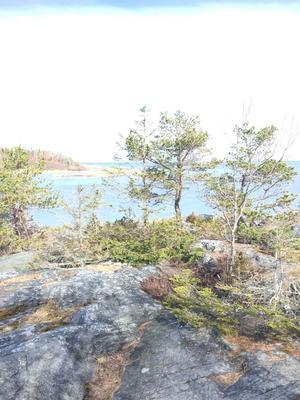 Sennebyhaken på Väddö. Foto: Gunilla Karbassi