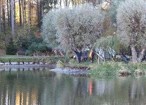 Stripa karpfiskeklubb fanns på plats vid Kumlasjön i torsdags. Meningen var att de skulle dra upp ett gäng karpar att skicka till analys, men de kammade noll.