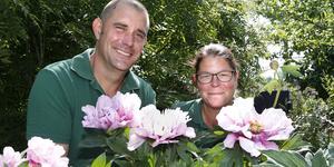 Per-Ivar och Jennifer Gustafsson har passion för pioner. De odlar runt 750 pioner per år och 200 får nya ägare under en och samma dag i deras trädgård.