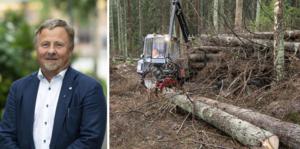 Torgny Hardselius har utsetts till ordförande för Norra skog. Foto på honom: Mikael Lundgren