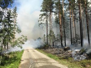 Vid branden i Broddbo förra sommaren fanns det flera vattendrag som räddningstjänsten kunde hämta vatten ifrån.