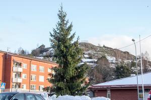 Arkivbild: Förra årets julgran i Ljusne fick mycket kritik för sitt utseende.