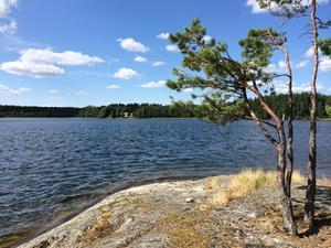 Sjön Yngern.