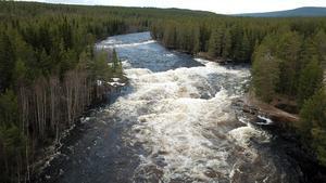 Klingforsen när vårfloden är i full gång.