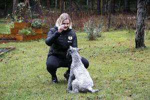 Med terriern Winnie och hennes mamma Luzy har Agnes Mattsson vunnit en mängd utmärkelser, främst vid utställning. På julafton fyller Agnes 19 år.
